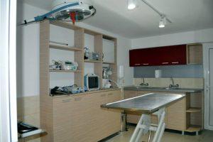 dr_conev-2.jpg
